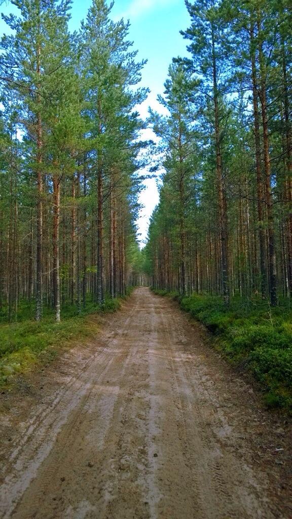 Enkelt trail turer harpiks